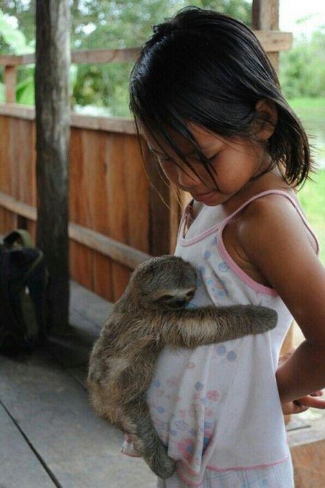 sloth hug!
